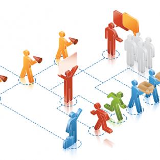 Organizing Alliance Capability