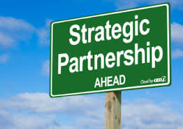 Vendor or Partner?
